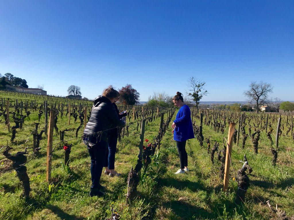 Bordeaux-winery-visit